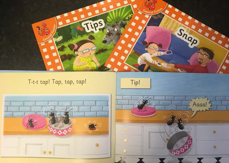 100% decodable phonics books using the first sounds set 1 - Gallery 2