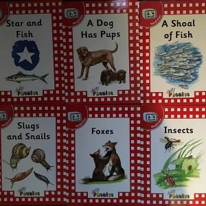 Jolly Phonics first readers non fiction (all six books) Level 1