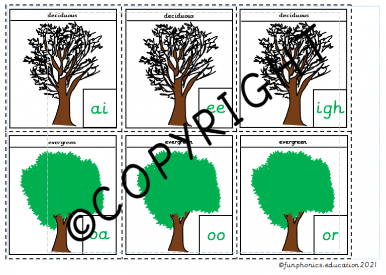 Phase 3b Deciduous and Evergreen Trees