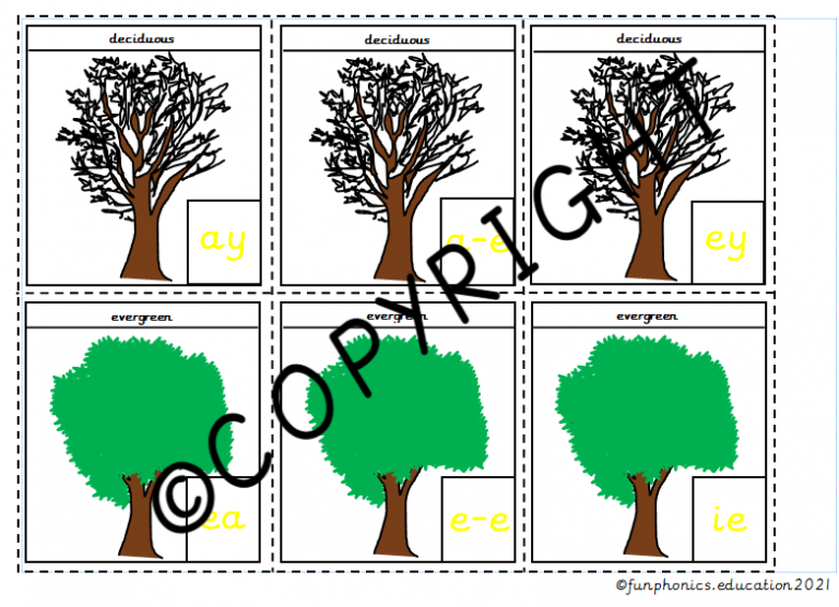 Phase 5a Deciduous and Evergreen Trees
