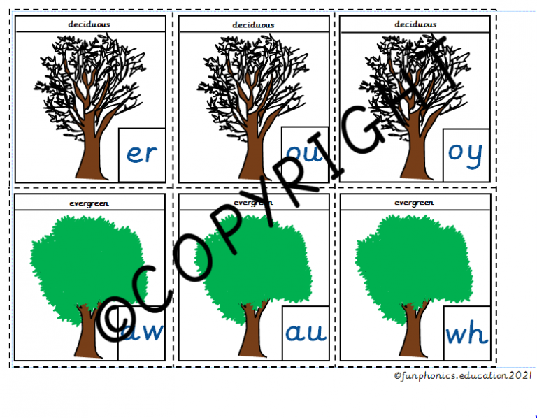 Phase 5b Deciduous and Evergreen Trees